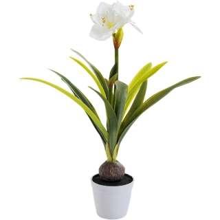 Deko Pflanze Amaryllis Weiß 78cm