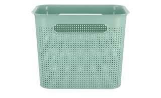 Aufbewahrungsbox ¦ grün ¦ Kunststoff ¦ Maße (cm): B: 26 H: 21 T: 18 Regale > Regal-Aufbewahrungsboxen - Höffner