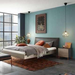 Doppelbett in Silberfarben und Anthrazit Nachtkonsolen (3-teilig)