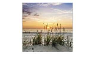 Glasbild 30x30 cm  Lonely Dune ¦ Maße (cm): B: 30 H: 30 Dekoration > Bilder & Schilder - Höffner