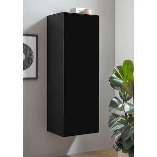 Wohnzimmer Schrank 45 cm breit Schwarz Hochglanz