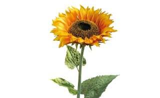 Sonnenblume ¦ gelb ¦ Kunststoff, Metall Dekoration > Kunstblumen - Höffner